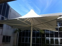 Truro College Umbrella Canopy